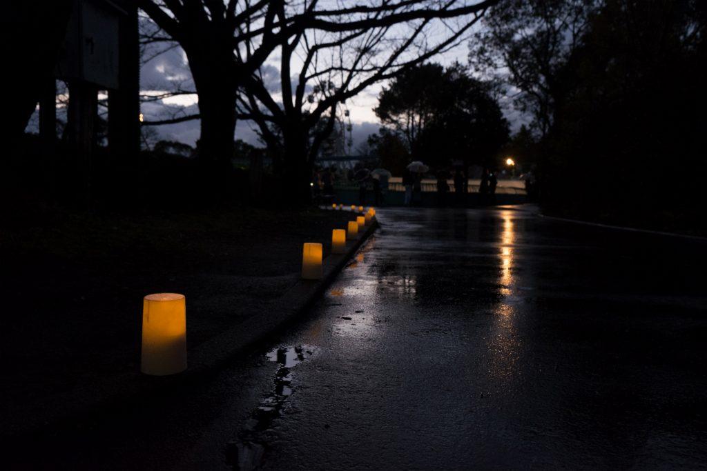 冬の夜間動植物園準備風景